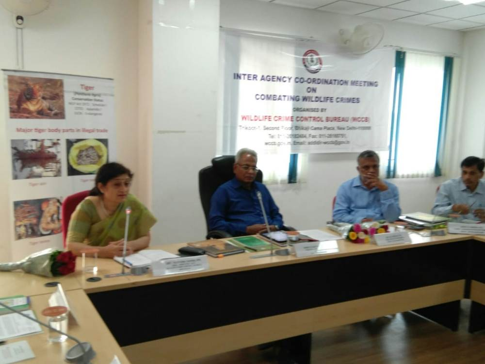 Inter-agency Coordination Meeting at Jaipur